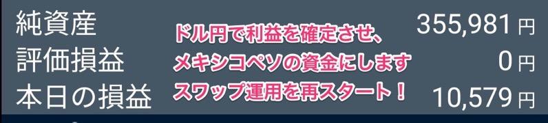 ドル円スワップポイントの利益